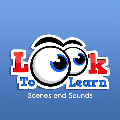 LookToLearn Assessment-Software Einzellizenz Erweiterung Einzellizenz Scenes and Sounds